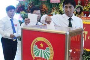 Đại hội đại biểu Hội ND Trà Vinh: Kết nối thị trường, đưa nông thôn đổi mới