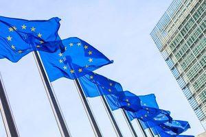 Ngoại trưởng EU thảo luận các vấn đề cấp bách