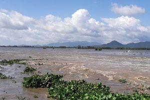 Lũ đồng bằng sông Cửu Long lên cao, chuẩn bị di dời hàng ngàn hộ dân