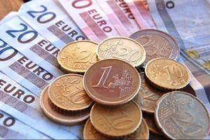 Tỷ giá ngoại tệ 31/8: Ngoại tệ ổn định, tỷ giá trung tâm giảm 5 đồng