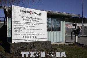 Tòa án Canada bác bỏ việc mở rộng đường ống dẫn dầu Trans Mountain