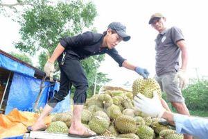Chống 'được mùa, mất giá' đối với nông sản Lâm Đồng