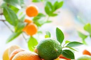 8 loại thực phẩm giúp bạn thanh lọc gan