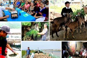 Việt Nam đăng cai tổ chức Diễn đàn Hiệp hội An sinh xã hội ASEAN