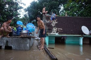Nước ngập mênh mông, nhiều người dân vùng lũ Thanh Hóa sống khổ trên mái nhà