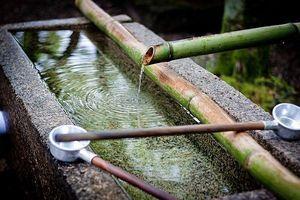 Cách tự làm trong và khử trùng nguồn nước sau mưa lũ