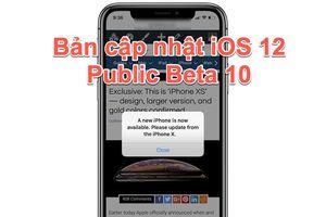 Apple phát hành bản cập nhật iOS 12 Public Beta 10
