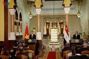 Chủ tịch nước gửi điện mừng tới Tổng thống Ai Cập