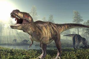 Bí mật trong 'DNA' giúp loài khủng long thống trị Trái Đất