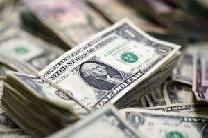 Cáo buộc Mỹ 'hành xử như sói hoang,' Thổ Nhĩ Kỳ nói không với đồng USD