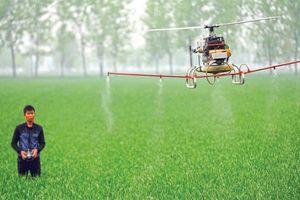 Colombia dùng drone phun thuốc diệt cây coca chống tổng hợp thành cocaine