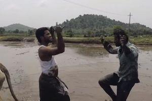 Hai nông dân thực hiện 'Thử thách Kiki' khi kéo cày gây sốt cộng đồng mạng