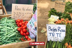 Đà Lạt có 'quầy rau tử tế', người mua rau tự bỏ tiền vào thùng