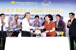 Cái bắt tay đưa sữa Việt 'bay' ra thế giới