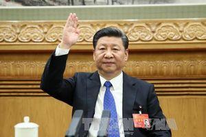Trung Quốc cam kết 8 sáng kiến lớn với châu Phi