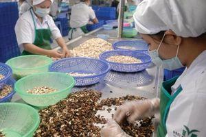 Đầu tư dự án chế biến sâu ngành nông nghiệp: Lời giải cho đơn đặt hàng của Thủ tướng