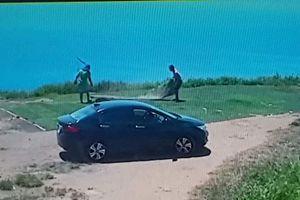 Lái ô tô lên bán đảo Sơn Trà để...trộm cỏ nhân tạo