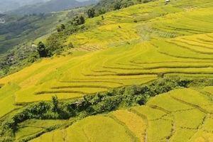 Ngày hội văn hóa du lịch vùng cao Na Hang