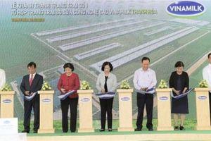 Vinamilk mở rộng mô hình trang trại bò sữa công nghệ cao