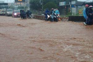 Miền Nam: Lúa ngập nước, giao thông tê liệt nhiều nơi