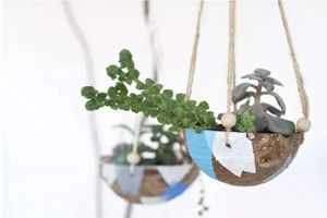 Bạn đã biết đến 13 ý tưởng trồng cây xanh từ đồ vật cũ để trang trí nhà cực đẹp mắt chưa?