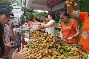 Dù chững lại, xuất khẩu rau quả vẫn sẽ đạt trên 4 tỷ USD