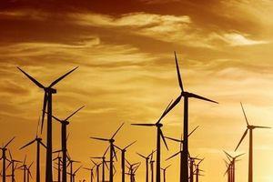Hàn Quốc sẽ xây trang trại điện mặt trời nổi tại hồ nhân tạo Sihwa