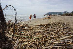 Sau lũ, bãi biển Sầm Sơn 'chìm' trong rác