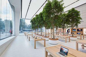 Bí mật khiến ai cũng phải bất ngờ về những chiếc bàn gỗ trong tất cả cửa hàng Apple Store