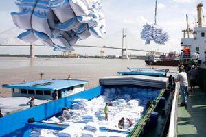 Xuất khẩu gạo dự báo tăng mạnh đến cuối năm