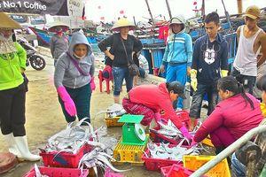 Thừa Thiên Huế hỗ trợ gần 40 tỷ đồng cho tàu đánh bắt xa bờ