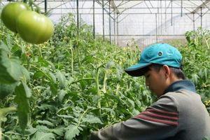 M&A tại Việt Nam - cần thêm quyết sách để đón kỷ nguyên mới