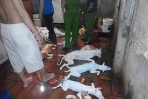 Có nên cấm kinh doanh thịt chó?