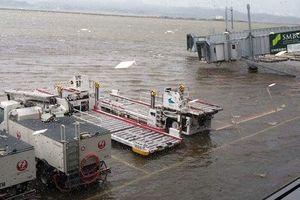 Hàng loạt chuyến bay đi Nhật Bản phải hủy do siêu bão Jebi