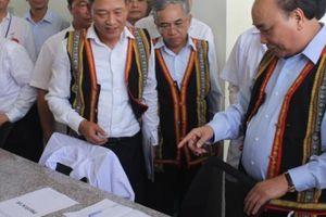 Thủ tướng: Sâm Ngọc Linh là 'quốc bảo' của Việt Nam
