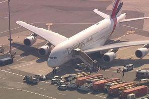 Máy bay bị cách ly tại phi trường New York vì 100 hành khách ngã bệnh