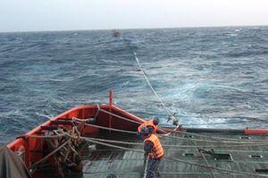 Cứu hộ 15 ngư dân và 1 thuyền viên người Trung Quốc