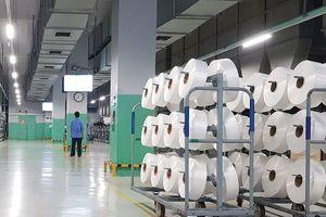 STK: Đơn hàng sợi tái chế tăng mạnh