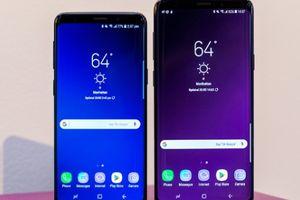 Galaxy S10 sẽ 'đánh bại' bộ ba iPhone năm nay