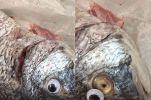Cửa hàng dùng chiêu biến cá ươn thành cá tươi