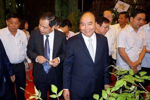Thủ tướng: Xây dựng 'thánh địa' sâm Ngọc Linh