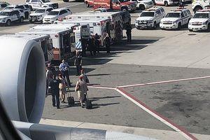 Cách ly máy bay chở 500 khách vì 100 khách cùng bị ốm