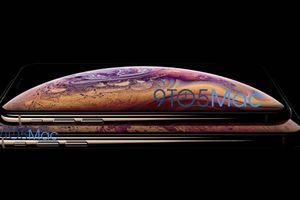 Rò rỉ giá của iPhone Xs, iPhone Xs Max và iPhone 6,1 inch