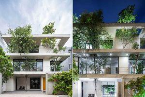 Ngôi nhà ở Sài Gòn mang cả thiên nhiên và an yên vào từng góc nhỏ