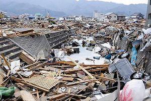 Bệnh viện Hokkaido (Nhật Bản) tạm dừng nhận bệnh nhân do siêu động đất