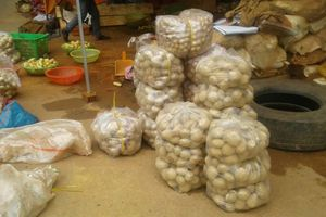 Sắp tới cấm đưa nông sản Trung Quốc vào chợ nông sản Đà Lạt
