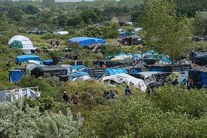 Pháp: Hội đồng Lập hiến phê chuẩn dự luật tị nạn và nhập cư
