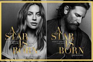 'A Star Is Born' là khởi đầu đầy hứa hẹn của Lady Gaga hay là giải Oscar mà Bradley Cooper để vụt mất?