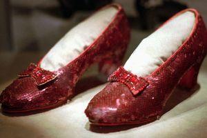 Tìm lại được đôi giày 'triệu đô' sau 13 năm bị đánh cắp