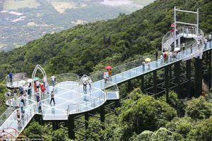 Khai trương cầu đáy kính xuyên rừng ở đảo Hải Nam, Trung Quốc